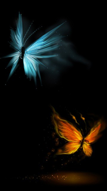 Butterfly hd Wallpapers 108p